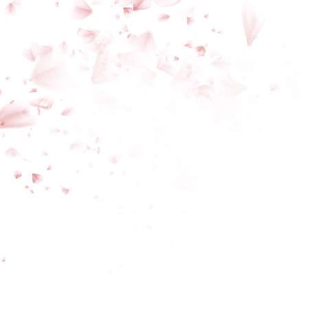 Hermosa flor de cerezo de color rosa, aislado sobre fondo blanco. Papel pintado floral con estilo de la primavera. Tarjeta de felicitación o invitación. EPS 10 archivo vectorial incluido Ilustración de vector