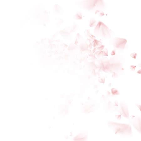 Sakura fioritura - petalo di caduta di ciliegio giapponese. Bel rosa di ciliegio rosa, isolato su sfondo bianco. EPS 10 file vettoriale incluso