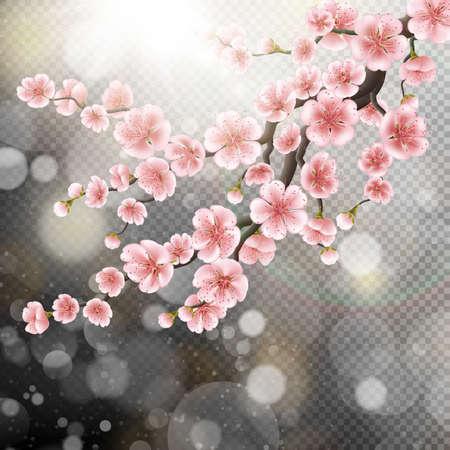 Blossoming pink sakura flowers. EPS 10