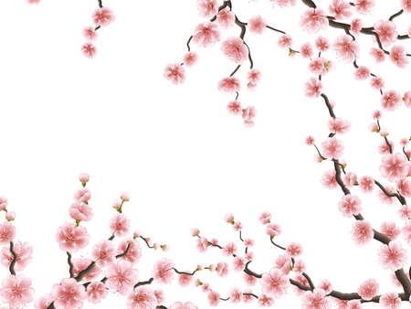 Sakura sboccia sullo sfondo. EPS 10