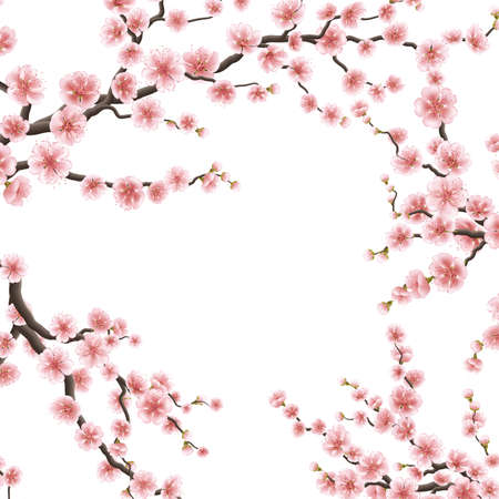 Printemps fleurs sakura. EPS 10