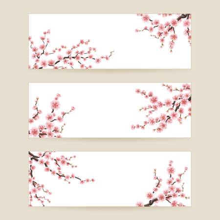 cerezos en flor: Cerezo flor de sakura. 10 EPS Vectores