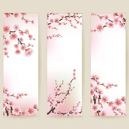 cerezos en flor: La flor de cerezo bandera realista. 10 EPS