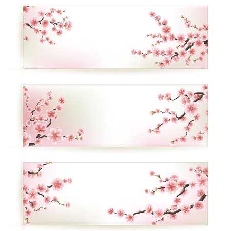 Set of Beautiful Floral Banners. EPS 10 Ilustracja