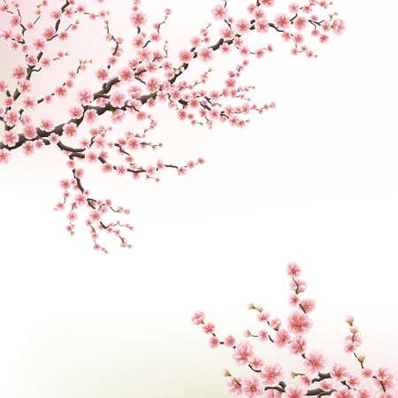 Kwitnąca wiśnia. EPS 10