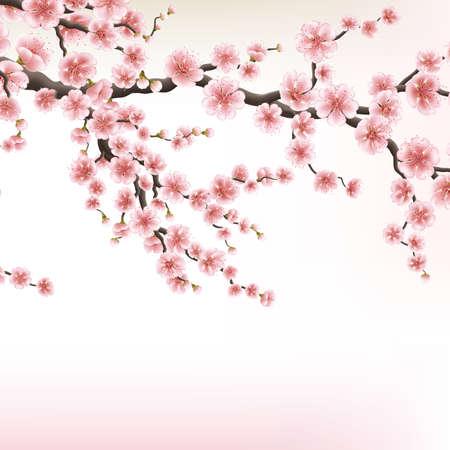 ramas de los árboles de cerezo en flor. 10 EPS