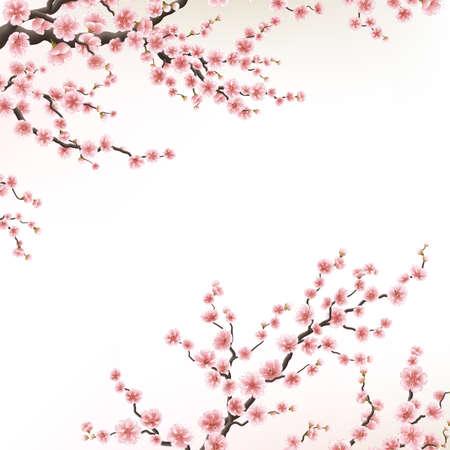 Zaproszenia z kwiatem sakura. EPS 10