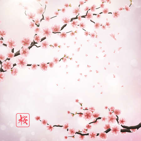 Realistic japan cherry branch. EPS 10