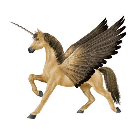 Horse unicorn illustration realistic design