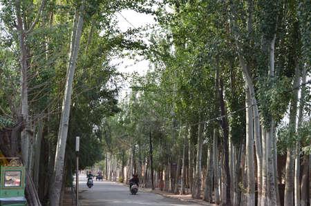 xinjiang: Kashgar,Xinjiang,China