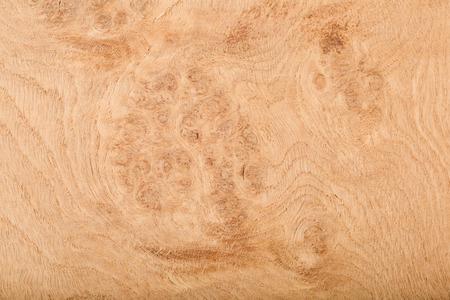 Macro abstracta de chapa de madera que muestra el detalle de la veta de la madera Foto de archivo - 24478819
