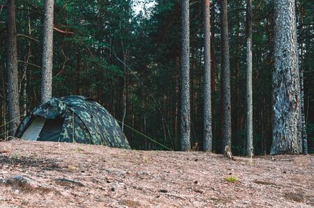 Camping tent on hill deep in the dark forest