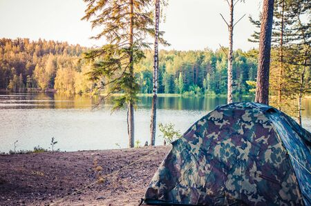 Forest scenery with camping tent among trees on bank of lake
