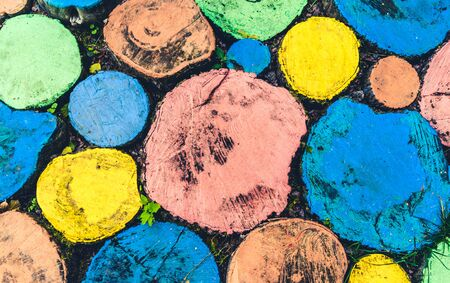 Abstract pattern of round shaped multi-colored tree stumps shot from above
