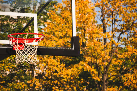 Basketball hoop with net and transparent board in autumn park 版權商用圖片