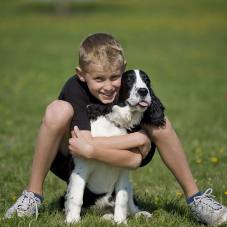 Pre-teen boy poses in a grass field with his Springer Spaniel puppy. photo