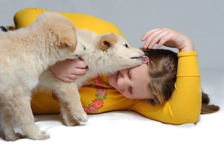 Two golden retriever puppies play with a teenage girl. One is licking the girls face. She is giggling. photo