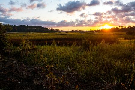 beautiful view of south carolina marsh at sunrise in charleston