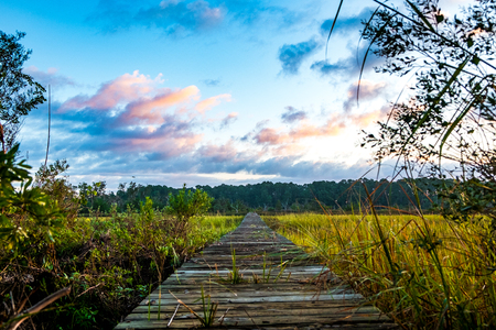 wooden pier on south carolina low country marsh at sunrise with cloudy sky Stock Photo