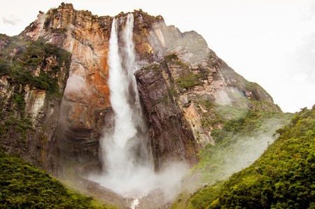 view from below forest of angel falls in venezuela in canaima park, giving a sense of discovery and awe
