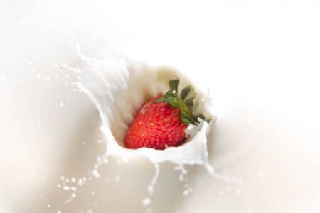 close up of red ripe strawberry falling on white milk and yogurt with a splash, symbol of summer fruit and healthy organic diet Foto de archivo - 149677690