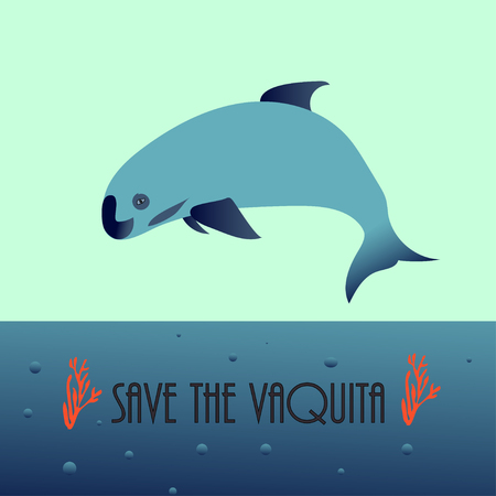 vaquita marina blue whale sealife vector illustration Vettoriali