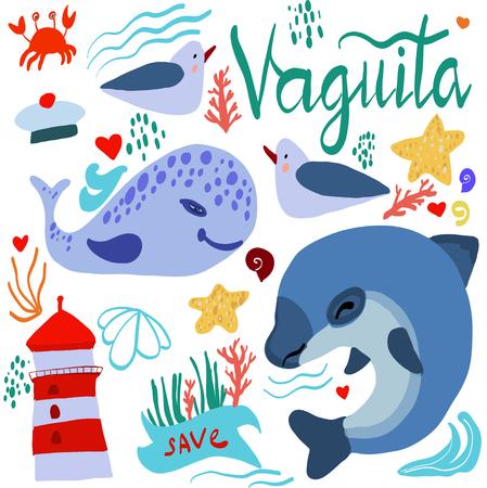 illustrazione vettoriale di vaquita marina