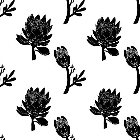 King protea hand drawn with outline graphic design vector 스톡 콘텐츠 - 133736339