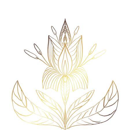 abstract illustration texture mandala vector