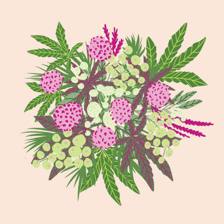 Cannabis bouquet for greetings card or packaging. Medicine cannabis illustration Illusztráció