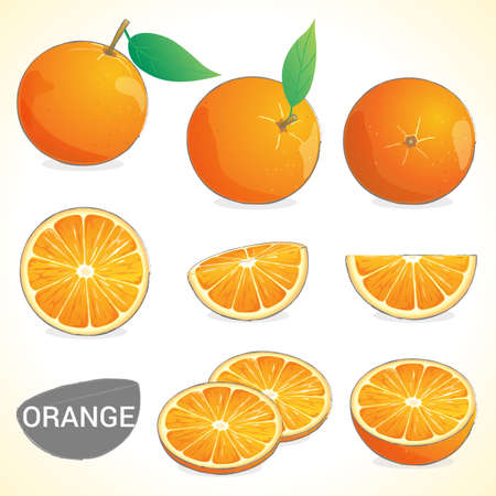 dietary fiber: Set of orange with leaf in various styles