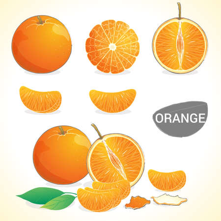 naranjas: Conjunto de las naranjas con hojas en varios estilos