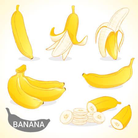 platano maduro: Conjunto de fruta de banano en los estilos de vectores y varios Vectores