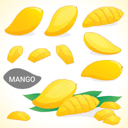 mango slice: Set of mango in vector and various styles
