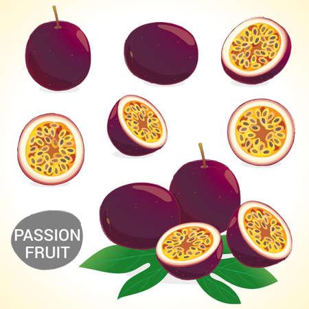 벡터와 다양한 스타일 Passionfruit와 열정 과일 세트