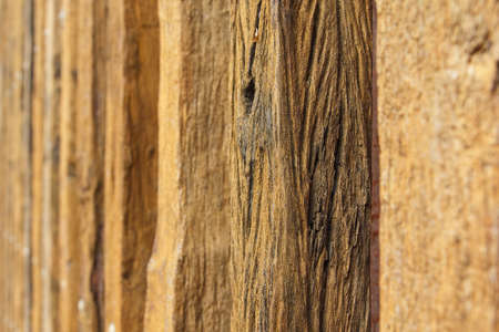 logging railroads: Old timber wood background Stock Photo