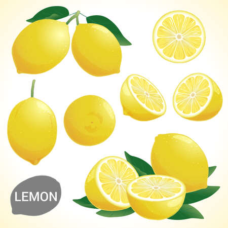 lemon wedge: Set of fresh yellow lemon in various styles vector format Illustration
