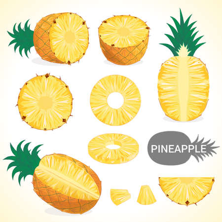 Set of pineapple in various styles vector format Illustration