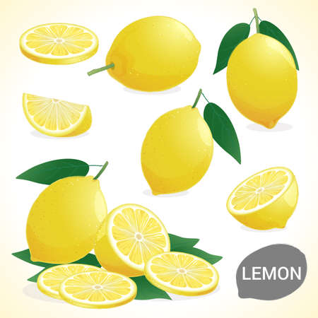 dietary fiber: Set of lemon in various styles