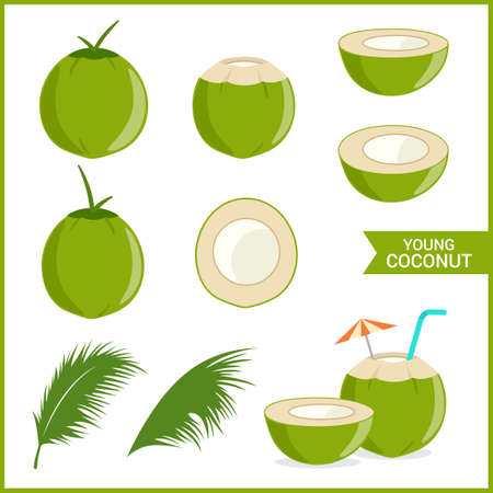 Set of fresh young coconut in vector format and various style Stock Illustratie