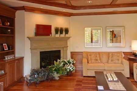 Luxury Living Room Stock Photo - 2257567