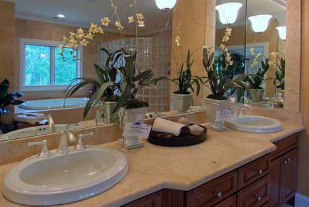 럭셔리 욕실