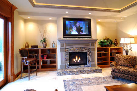 Luxurious Living Room with Fireplace