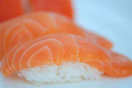 Pink Salmon photo