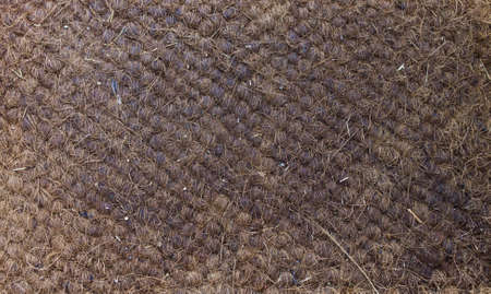 pattern and texture of the old doormat