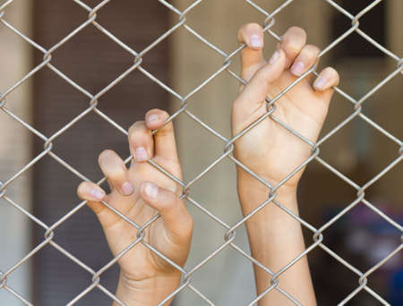 prisoner of war: two hands of a man are grabbing mesh cage