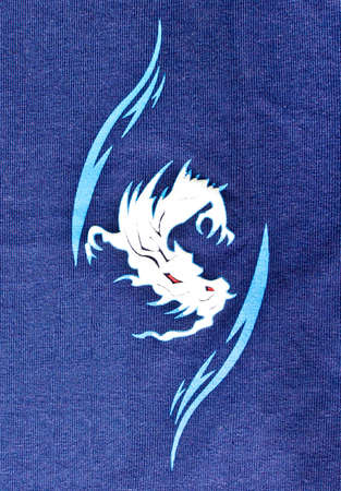 pattern of dragon painting on the navy cloth photo