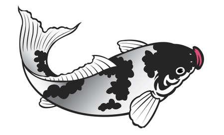 painting of carp fish on white background Stock Photo