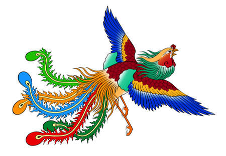 phoenix chinese style on white background photo