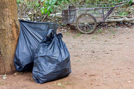 Sacs � ordures noirs pour le nettoyage dans le parc Banque d'images